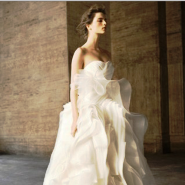 Vera Wang collaborates with David's Bridal for White collection