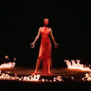 Alexander McQueen Savage Beauty promotional image from Victoria and Albert Museum, London