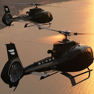 Helicopters chartered by Fly Blade
