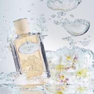 Infusion de Fleur d'Oranger from Prada