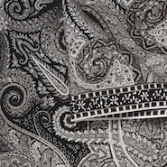 Etro paisley: Designs on India