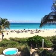 Trump Miami beach