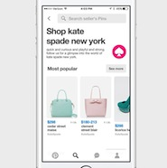 Pinterest updates its shopping capability