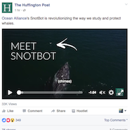 Huffington Post's video to garner views with science