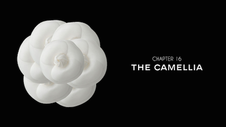 Online's not black and white. Image courtesy Chanel's Camellia film 2016