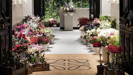 Loewe's Madrid flower shop
