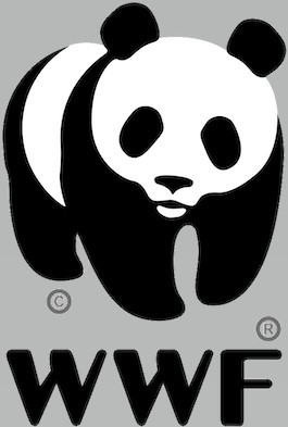 The WWF logo, in its reductive form, has done more for panda awareness than any icon for an animal worldwide. Image courtesy of dewebsite.org. Copyright WWF